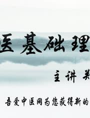 中医基础理论视频17_中医基础理论郑洪新教授主讲-视频在线观看-中医世家网-爱奇艺