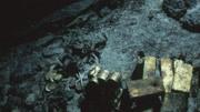 男子潜水却在水下拿金属探测器寻宝,无意间发现了许多宝贝!
