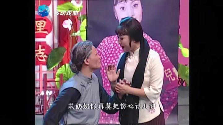 豫劇 王紅麗 王燕《鍘刀下的紅梅》選段 求奶奶你再莫把傷心話講